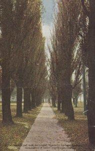 TORONTO, Ontario, Canada, 1900-1910s; Autumn Scene, Hanlan's Point