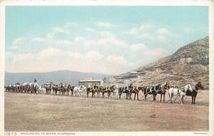 Twenty Caballo Team Tren Transporte Mineral a Arizona Minas Fred Harvey