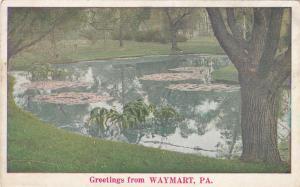 Greetings from WAYMART, Pennsylvania, 00-10s