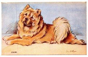Dog , Chow