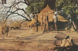 Zembesi Fishing Fischcatch Zambia Postcard