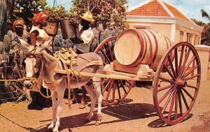 N.A. Curacao, Water Vendor, Donkey, Barrel, Carriage Cart