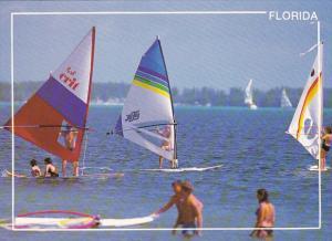 Wind Surfing In Florida