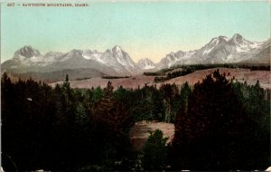 Sawtooth Mountains, ID - VINTAGE - COLOR - HUNTING - Postcard PC