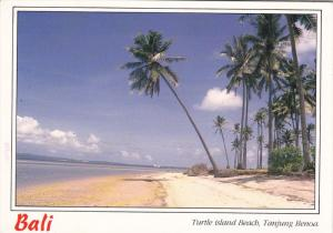 Turtle Island Beach, Tanjung Benoa, BALI, Indonesia, 50-70´s