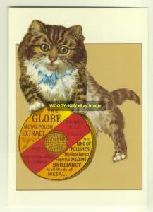 ad1829 - Globe Metal Polish - Kitten - modern advert postcard