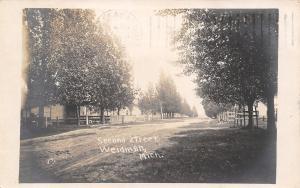 Weidman MI Dirt Second Street~Wooden Fences~Real Photo Postcard RPPC 1908 As Is