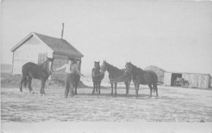 C-1910 Rural Pioneer Life Farmer Horses RPPC Photo Postcard 6018