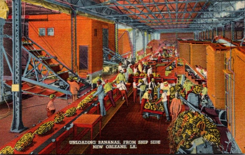 Louisiana New Orleans Unloading Bananas From Ship Side Curteich