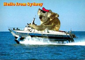 Australia Sydney Hello Hydrofoil Passenger Service With Giant Koala
