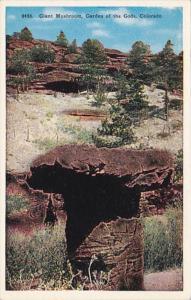 Colorado Giant Mushroom Garden Of The Gods