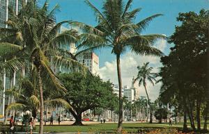Florida Bayfront Park at Biscayne Boulevard Heart of Miami Postcard
