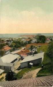 Birdseye of Panama City~Beach House~outhouses~Rooftop Views~ca 1910 Postcard