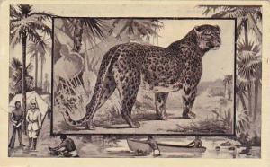M J Mintz Animal Series The Leopard
