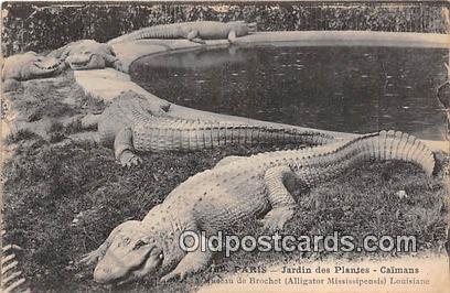 Paris Jardin des Plates Caimans Postcard Post Card Paris Jardin des Plates Ca...