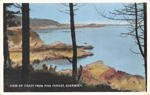 View of Coast from Pine Forest, Guernsey