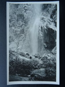 Trinidad & Tobago MARACAS WATERFALL - Old RP Postcard
