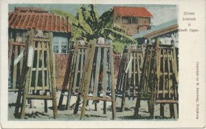 Chinese Criminals in Death Cages, early China postcard, unused