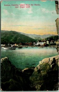 1911 Catalina Island, Calif. Postcard AVALON Waterfront View from the Rocks