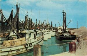 Shrimp Boats Trawlers Gulf of Mexico Campeche MX Postcard