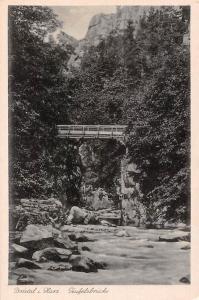 Bodetal Harz Teufelsbruecke Pont Bridge Creek Forest