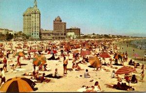California Long Beach Sunbathers On The Beach