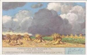 Liebig Trade Card S1281 Cloud Formations No 4 Cumulo nimbus