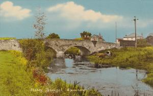 Cattle, Stoney Bridges, AXMINSTER (Devon), England, UK, 1940-1960s