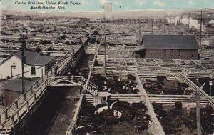 Nebraska South Omaha Union Stock Yards Cattle Division 1911