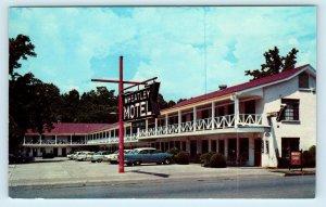 HOT SPRINGS NATIONAL PARK, AR ~WHEATLEY MOTEL c1950s Cars Roadside  Postcard