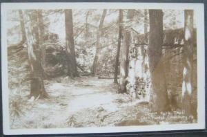 Deer Park Trail Cook Forest Cooksburg PA Real Photo Postcard