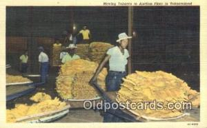 Moving Tobacco to Autction Floor Farming Postcard Post Card Tobaccoland Movin...