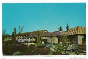 Bellevue , Washington , Thunderbird Motel & Restaurant , 50-60s