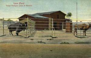 peru, LIMA, Parque Zoologico, Bisontes, ZOO (1910s) E. Polack-Schneider Postcard