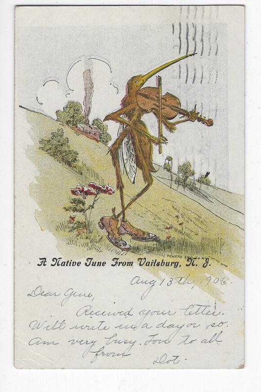 MOSQUITO PLAYING FIDDLE USED POSTCARD 1906 UDB NATIVE TUNE VAILSBURG NJ