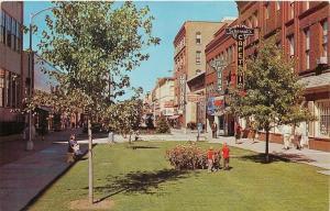 Kalamazoo Michigan~Mall Courtyard~Schensul's Cafeteria~La Paull's Furs~1960s PC