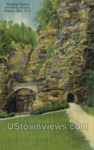 Entrance Tunnel & Sentry Bridge Watkins Glen NY Unused