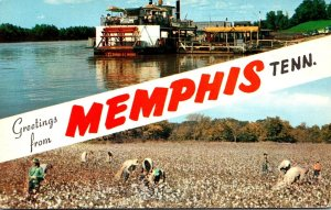 Tennessee Memphis Greetings Showing Memphis Queen II and Cotton Picking Scene