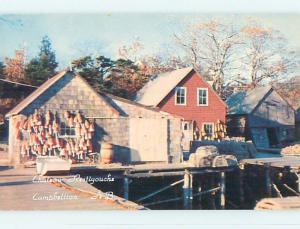 Unused Pre-1980 TOWN VIEW SCENE Campbellton New Brunswick NB p8560