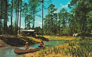 Canoeing, White Horse, RV, Fort Wilderness, Walt Disney World, FLORIDA, 40-60'