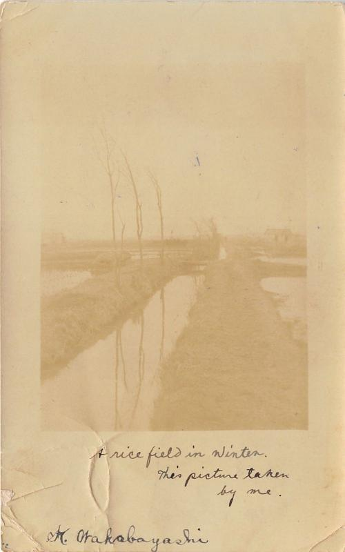 Nanjo Japan~Rice Field in Winter (Taken by Author of Note on Back)~1909 RPPC