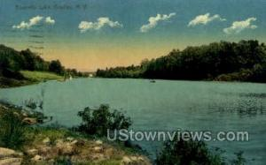 Bonnell Lake Bradley NY 1911