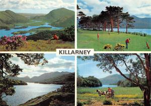 Killarney Lakes and Fells Panorama Golf Horse Carriage