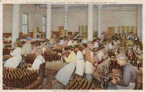 WALKERVILLE , Ontario , 1912 ; Bottling Canadian Club Whisky