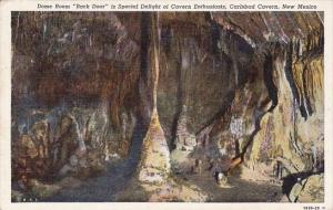 Dome Room Back Door Is Special Delight Of Cavern Enthusiasts Carlsbad Cavern ...