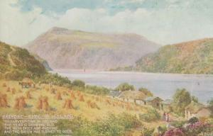 Harvest Time In Ireland Farming Antique Irish Postcard