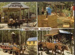 Australia Postcard - Timbertown, Wauchope, New South Wales  WC95