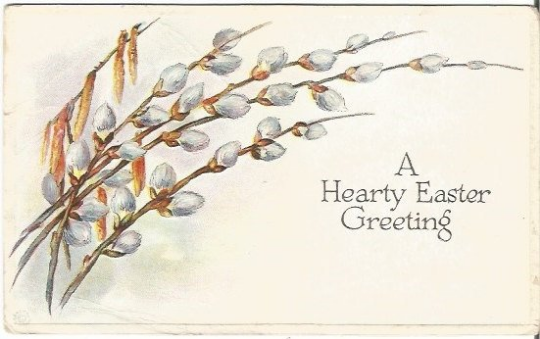 Vintage Postcard decorated with Light Gray White Pussy Willows for Easter