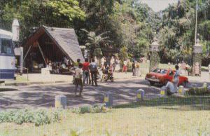 Sri Lanka Kandy Peradeniya Gardens