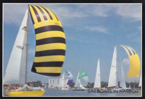 Sailboats in the Charleston Harbor, CHARLESTON, South Carolina, 50-70's